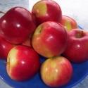 Alma - 1 kg, Kulinária (Ízporta), Gyümölcs, zöldség,  2012.03.08. 11:16    Egyedül az alma az a fajta gyümölcs, amit más ételekkel is együtt ehetü..., Ízporta
