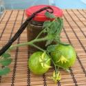 Vaníliás zöld paradicsom lekvár, Lekvár, Készételek, Az egzotikus-lágy vanília íz találkozása a zöld paradicsommal meglepő ízharmóniát eredmén..., Ízporta