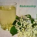 Bodzaszörp, Kulinária (Ízporta), Szörp, Amíg a bodzavirágzás tart, a készlet erejéig folyamatosan kapható tartósítószermentes és m..., Ízporta
